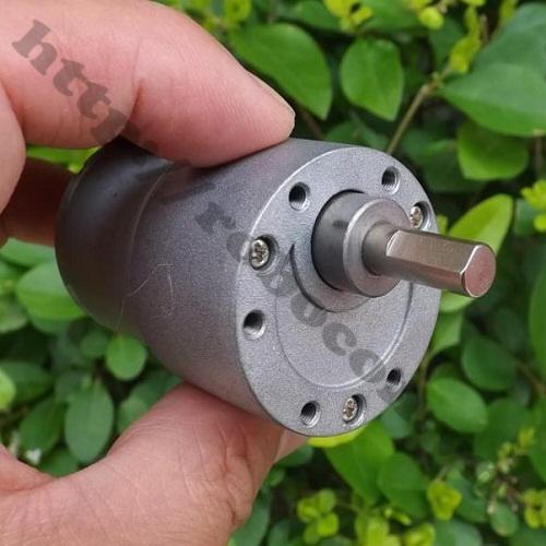 LKRB94 Động Cơ Giảm Tốc Trục D CW37 12VDC