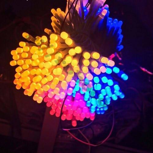 LED89 LED Liền Dây Phi 5 Màu Xanh Dương (100 Bóng)