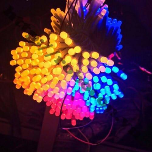 LED90 LED Liền Dây Phi 5 Màu Xanh Lá (100 Bóng)