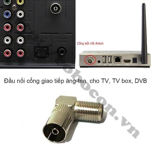 CO227 GIẮC CẮM ANGTEN TV F5 RF CỔNG CÁI VUÔNG GÓC