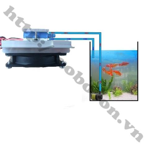 CBM43 Bộ Combo Làm Mát Bể Cá Sử Dụng Sò Nóng Lạnh 60W