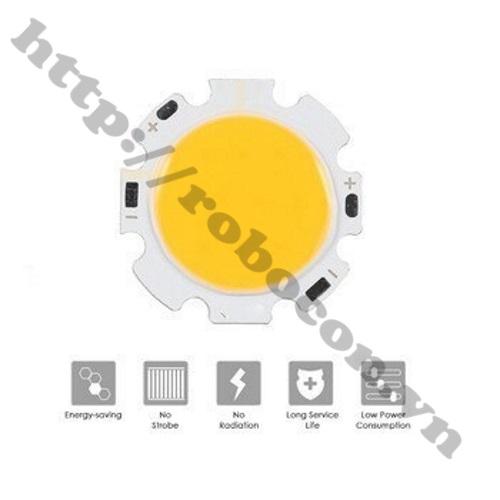 LED128 Nhân đèn led COB 30V-10W trắng ấm
