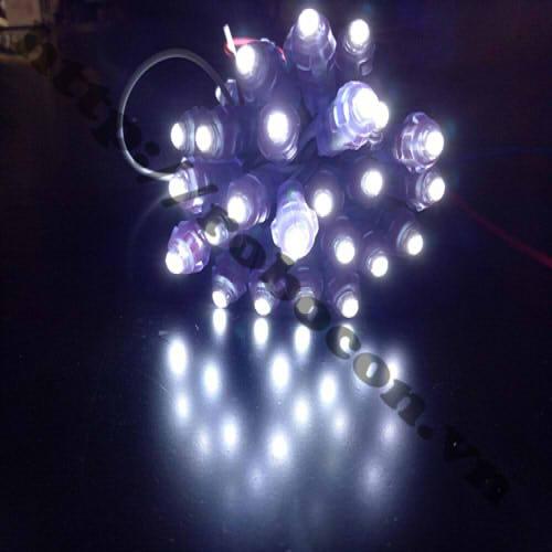 LED102 LED Đúc Phi 5mm Đế 8mm Ánh Sáng Trắng