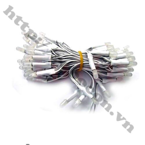 LED91 LED Liền Dây Phi 5 Màu Trắng (100 Bóng)